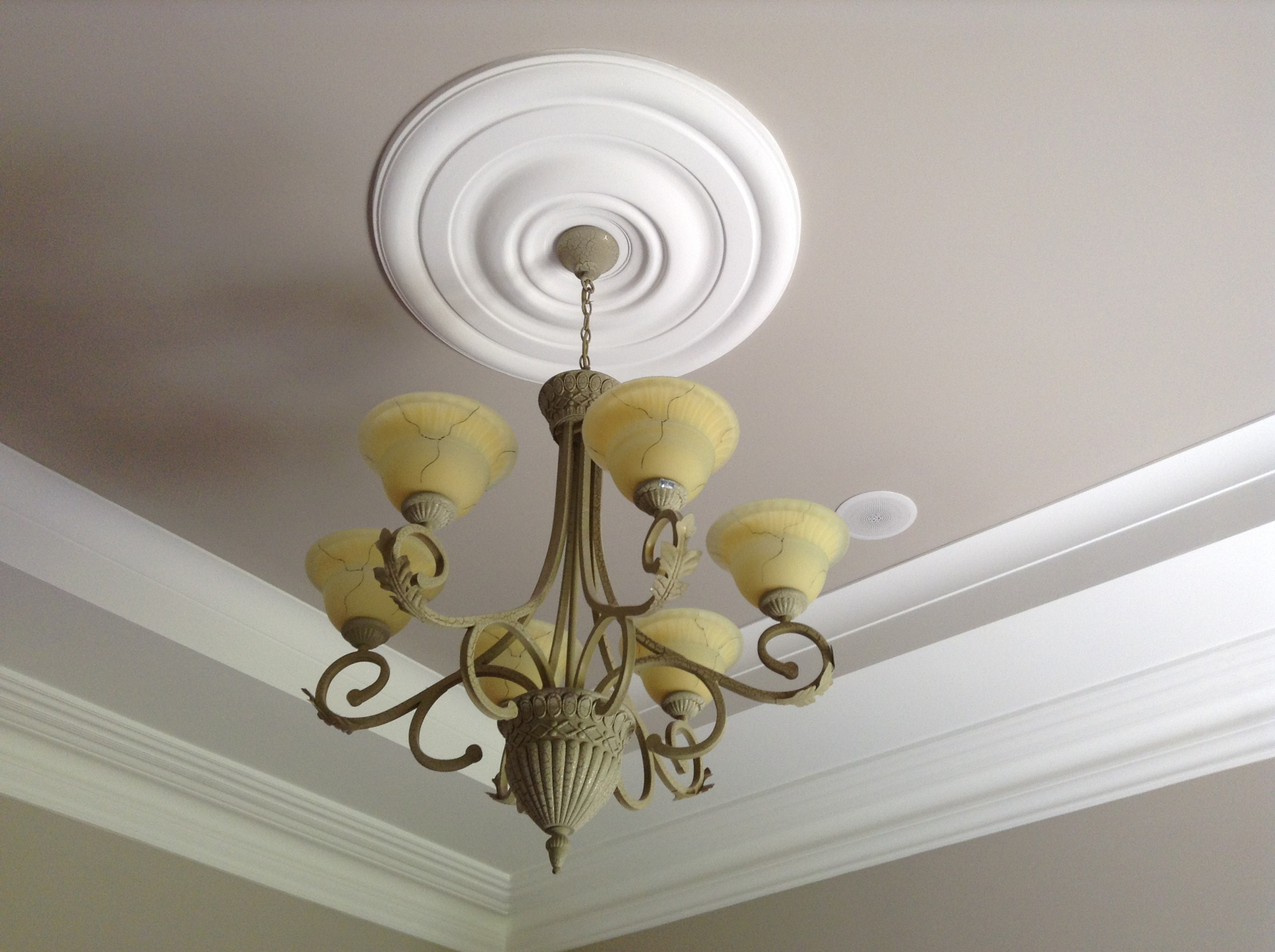 Plaster ceiling light surround ceiling designs ordinary ceiling light surround 4 and phase img 1072 molloy plaster mouldings cornice suppliers manufacturers tullamore aloadofball Images